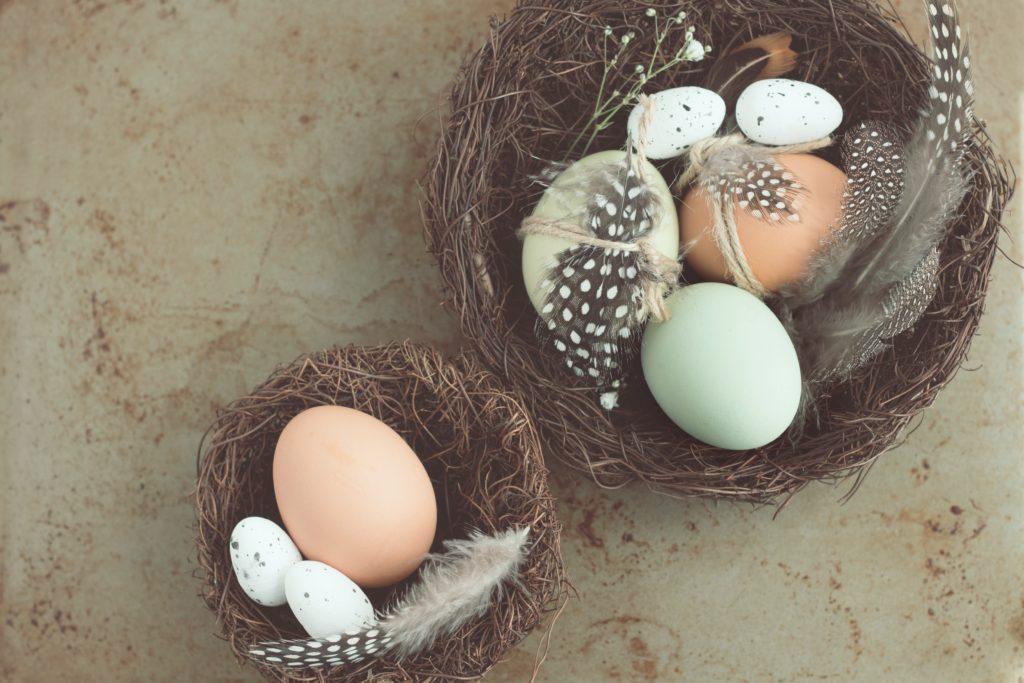 Eier und Feder liegen in einer Schale.