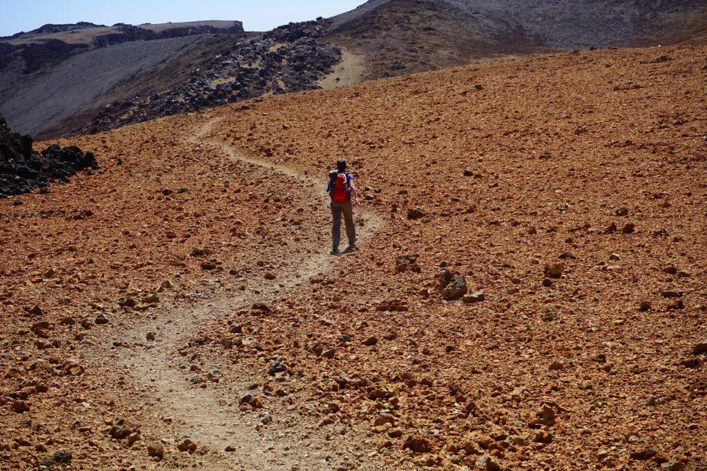 Wanderer in Wüste