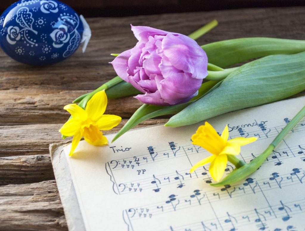 Frühlingsblumen liegen auf Notenblättern