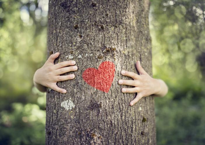 Baumstamm mit Herz
