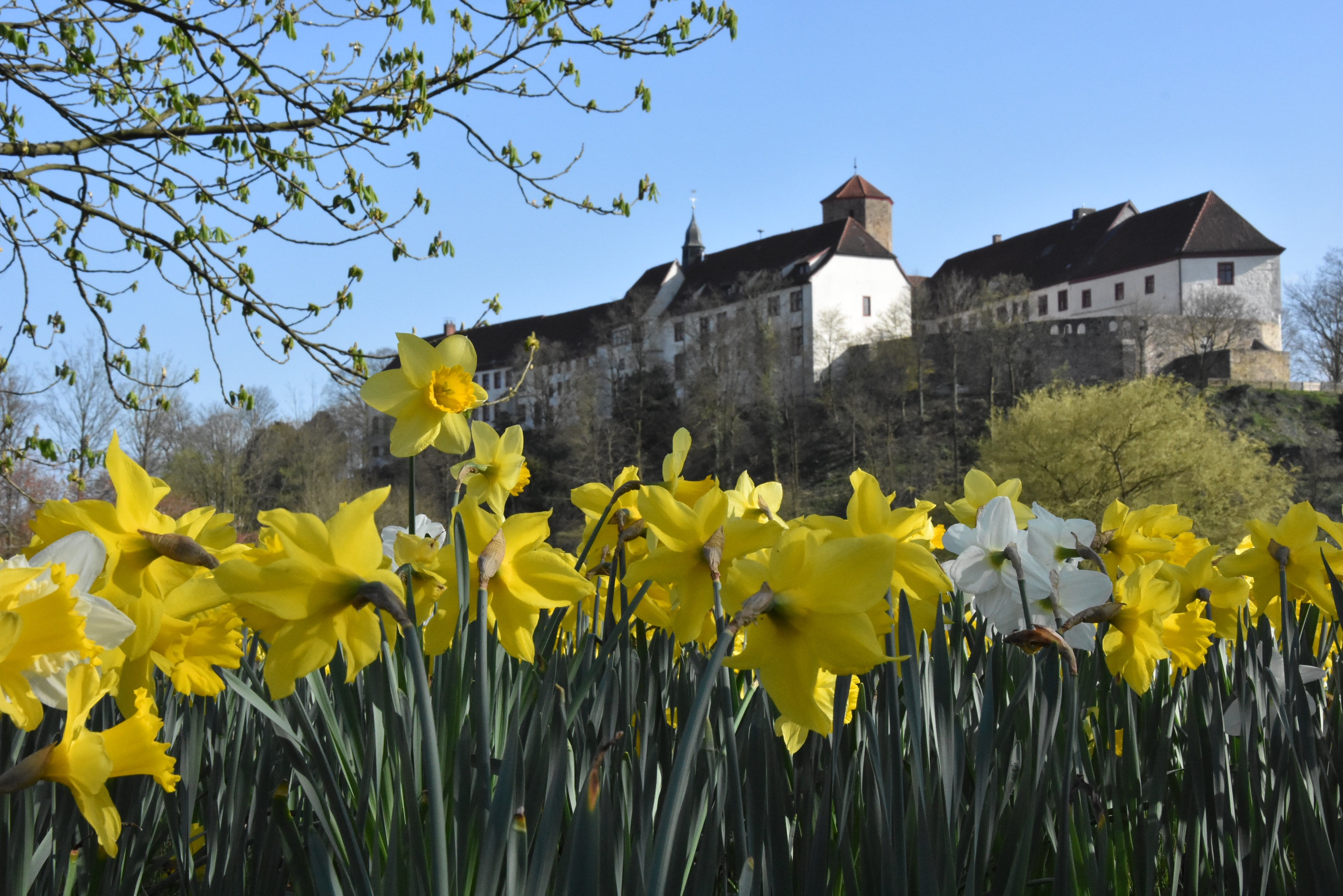 Das Bad Iburger Schloss im Frühling