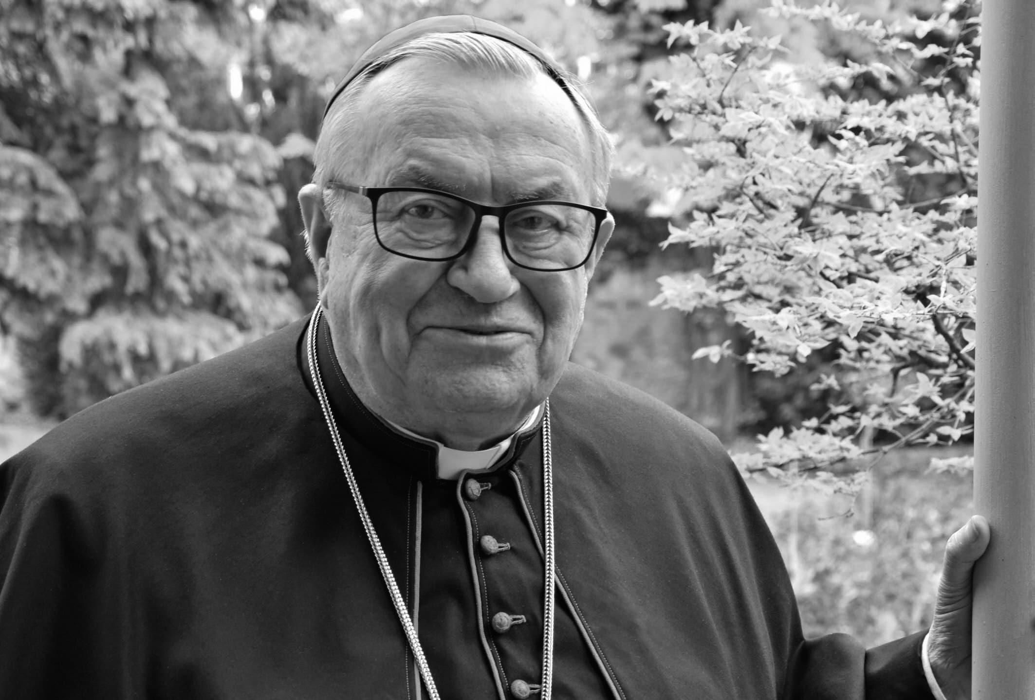 Karl Kardinal Lehmann, Bistum Mainz