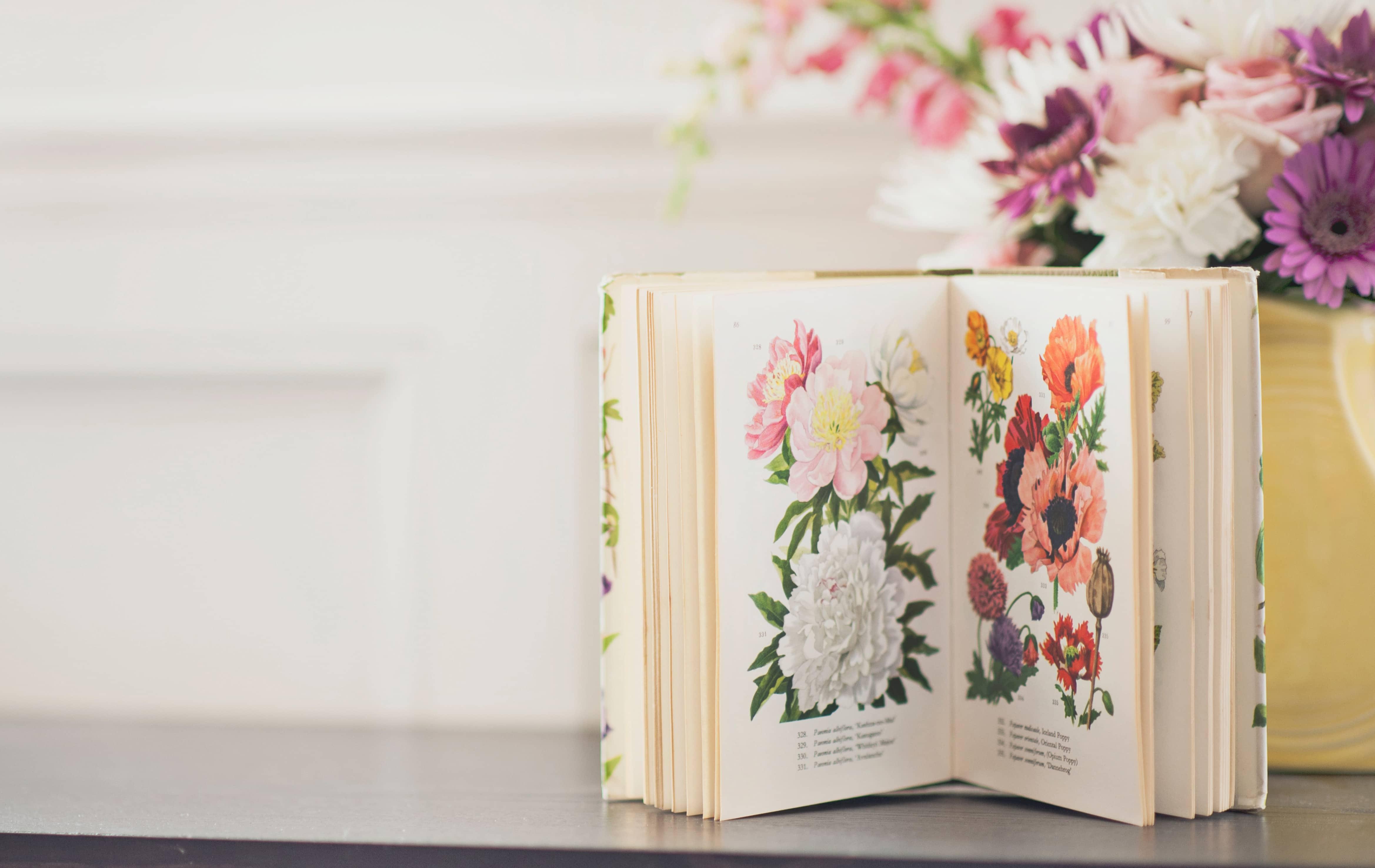 Blumenbuch und Blumen auf einem Tisch