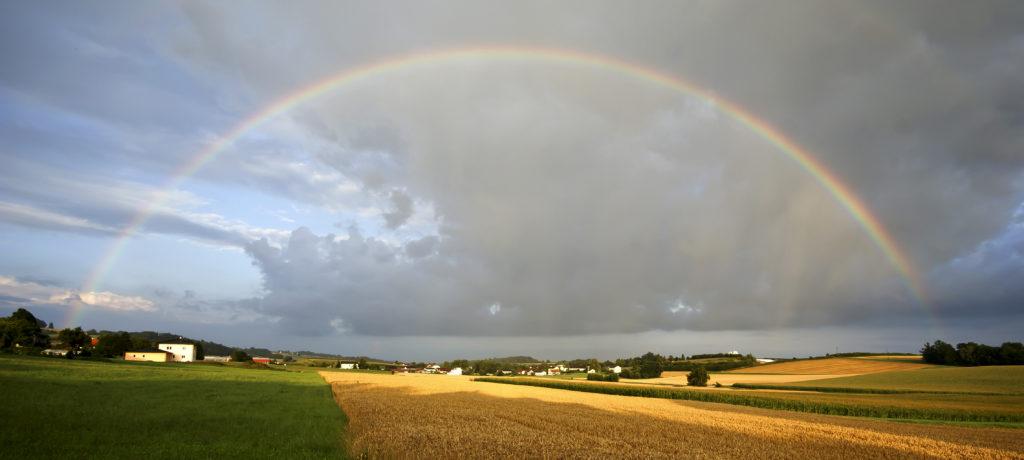 Regenbogen über einem Feld
