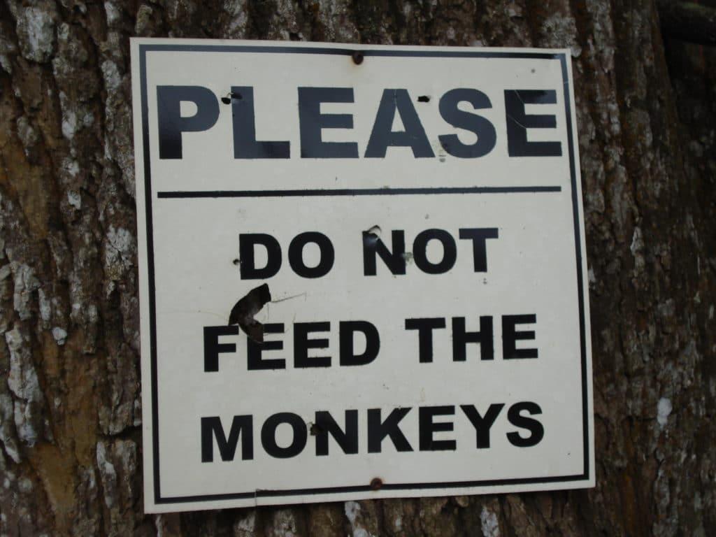 Schild: Please do not feed the monkeys