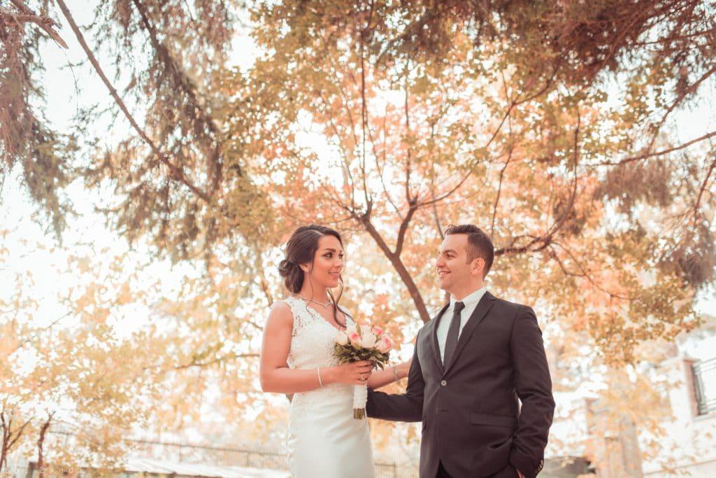 Ehepaar am Hochzeitstag unter einem Baum
