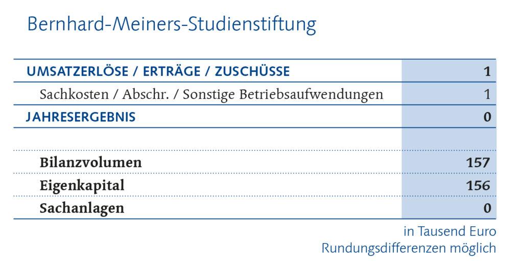Bernhrd-Meiners-Stiftung Finanzbericht