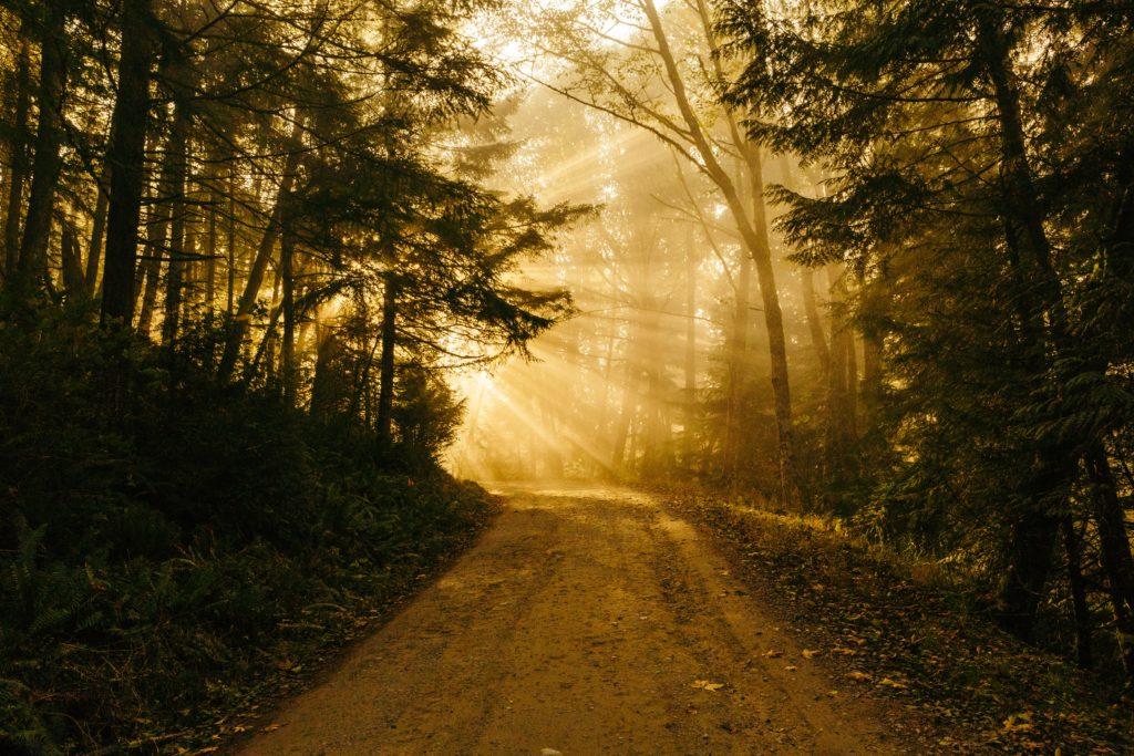 Der Weg nach Ostern