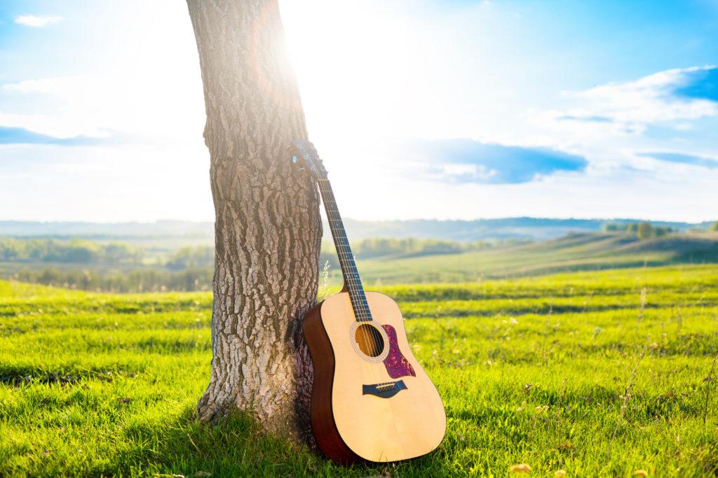 Gitarre lehnt an einem Baumstamm