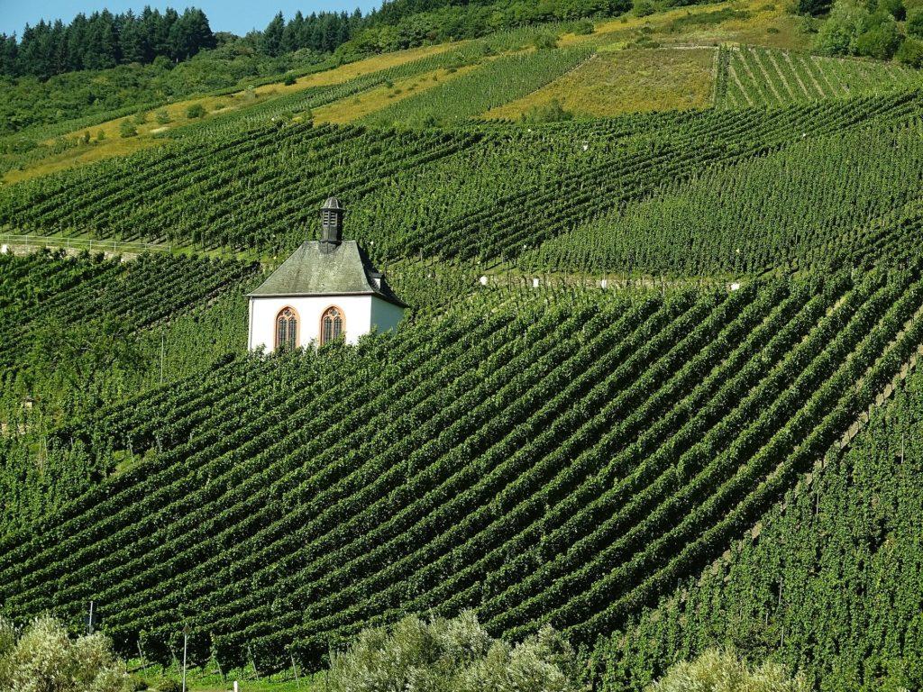 Eine Kapelle steht im Weinberg