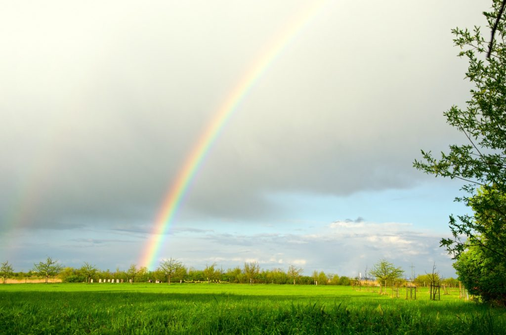 Der Regenbogensatz