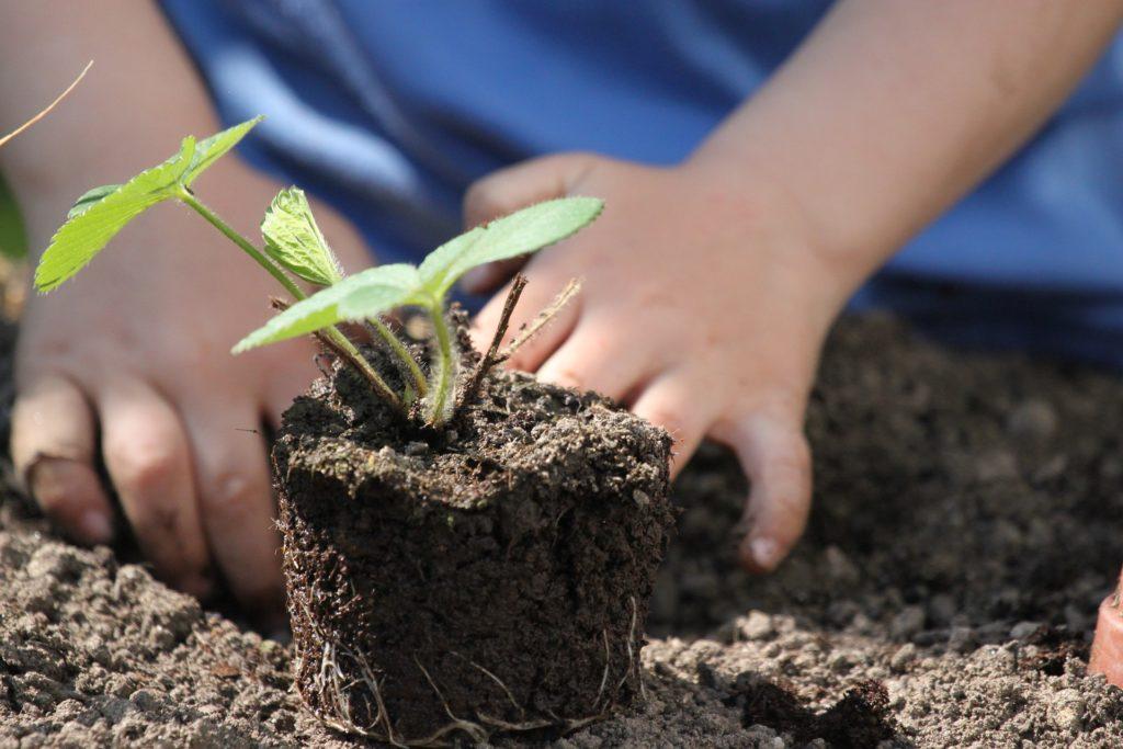 Kind, das im Garten arbeitet